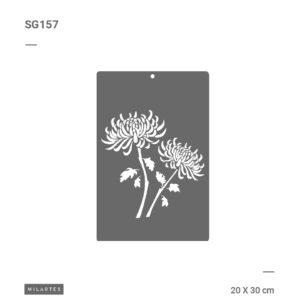 SG157