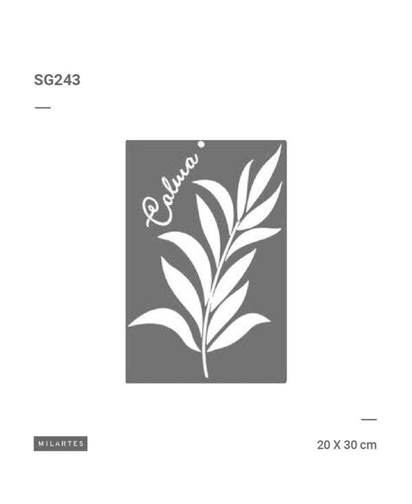 SG243