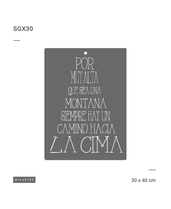 SGX30